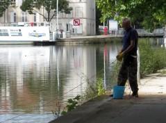 HLM pour insectes (02/08/2012)