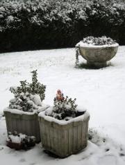 Petite annonce (11/01/2012)