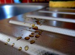 Gouttes de café (13/01/2012)