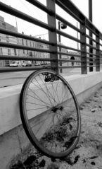 Roue... sans le vélo! (18/01/2012)