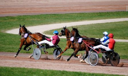 Course,  Hippodrome de Nancy Brabois (01/04/2012)