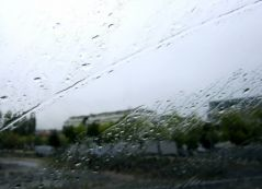 Pluie (25/09/2012)
