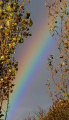 Arc-en-ciel (05/11/2012)