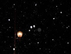 Premère neige (02/12/2012)