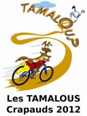 Illustration T-Shirt Tamalous 2012