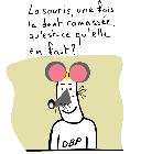 petite_souris03.TN__.png