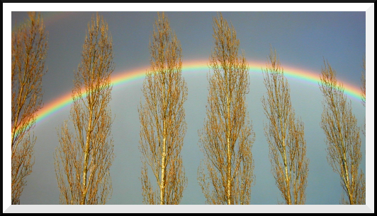 arc en ciel à Nancy